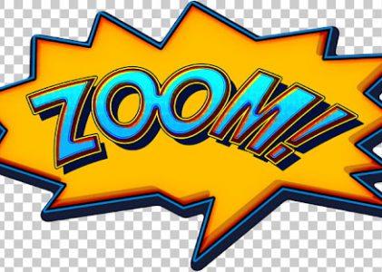 Thirteen Types of Zoomers
